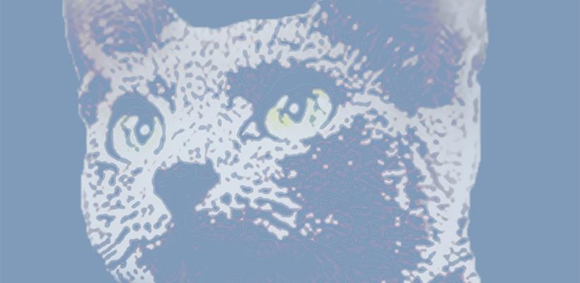 PODCAST : L'aventure rêvée de Monsieur Le Chat